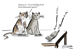 2 cats and the phone