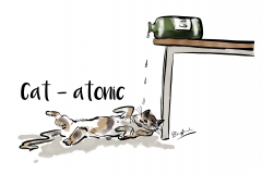 cat-atonic-just design
