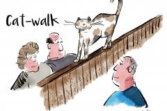 cat-walk design only