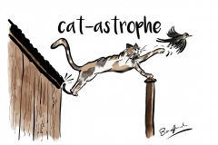 catastrophe design only