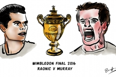 Wimbledon Final 2016