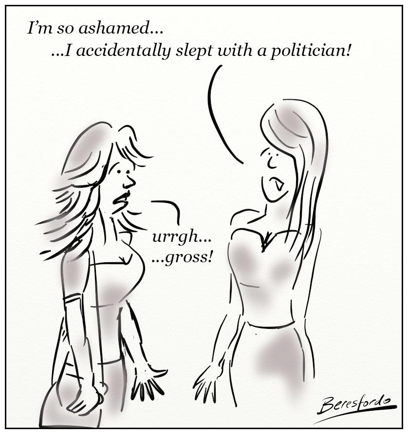 accidental politician