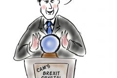 camerons crystal ball